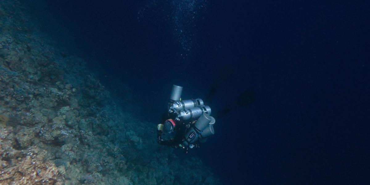 Jenny Lord Deep Dive
